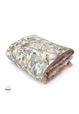 Sametová teplá deka pro děti s motivem ornitologie